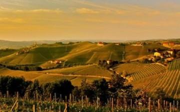 Vino Piemonte Novara