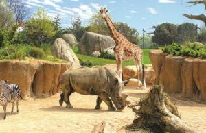 ZOOM биопарк в Турине - Зоопарки Италии