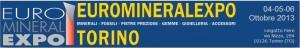 Выставка минералов Турин Линготто