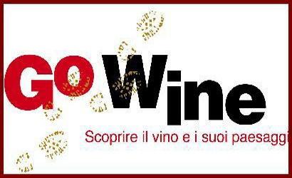 Знаменитые выставки вина в Турине Пьемонте