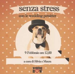 Свадьбы для домашних животных в Турине