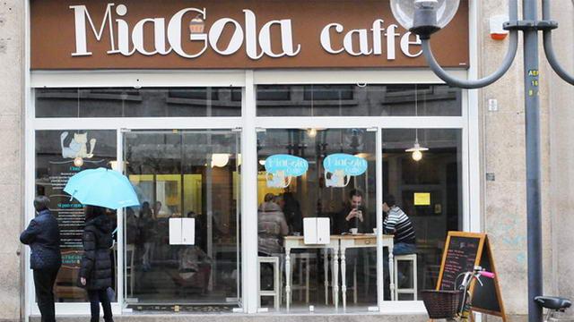 КотоКафе в Турине, первое в Италии
