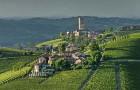 Винные пейзажи Пьемонта внесены в список Всемирного наследия ЮНЕСКО