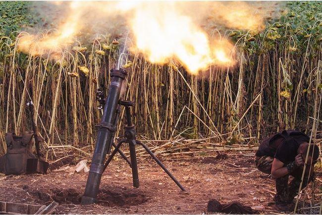 Украинские минометные расчеты в подсолнухах Украина