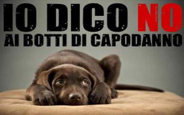 Защита животных в Италии на Новый год