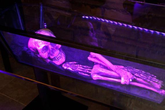 Скелет под стеклом дом дьявола Турин