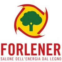 Выставка энергии леса в Турине