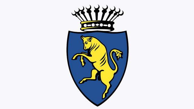 Сине-желтый Турин Почему цвета нашего города желтый и синий?
