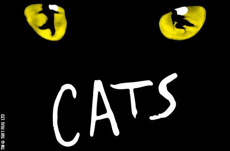 Театральные выступления в Турине кошки Театр афиши