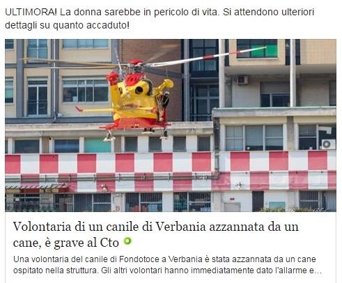 Женщину в Турине растерзала собака