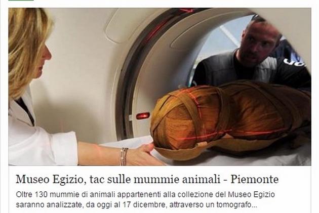 В Турине проводят томографический анализ мумий в египетском музее