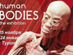 """Тайны человеческого тела"""" в Турине выставка, узнайте про свое тело"""