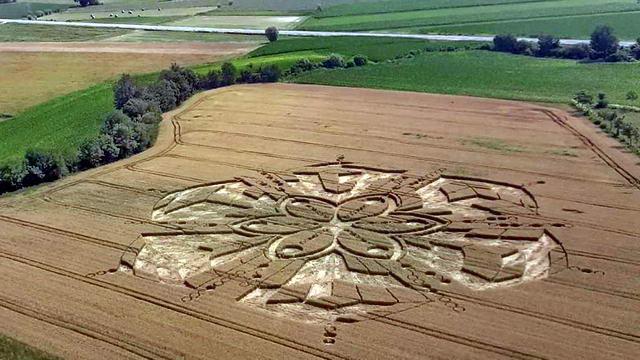 Круги на пшенице в Пьемонте