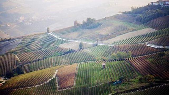 Пьемонт завоевал 6-е место в ТОП 10 европейских стран Турин