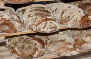 Секрет лучшего итальянского хлеба в Турине и Пьемонте
