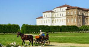 Тур на лошади по парку Венария Реале
