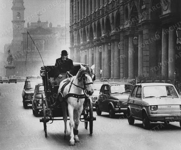 Животные в истории Турина. От эксплуатации к защите