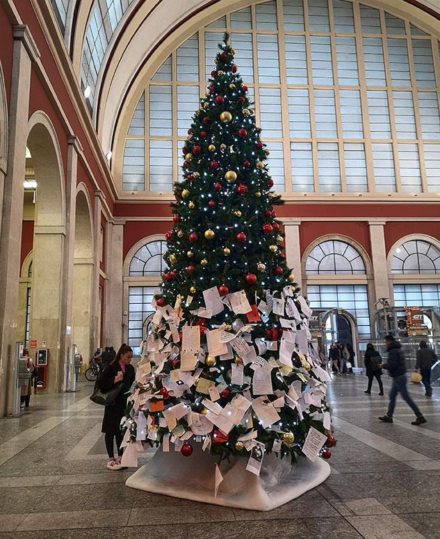 Новогодняя елка в Турине и списки желаний Новогодняя елка в Турине