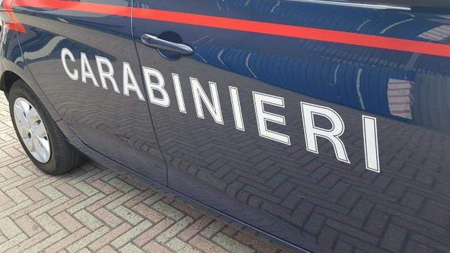 Сиделка обманула работодателя в Турине