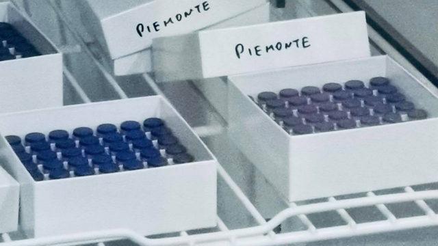 Первая вакцина Пфайзер поступившая в регион Пьемонт
