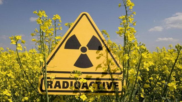 Ядерная промышленность в Италии Турин
